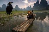 10 лучших фотографий National Geographic